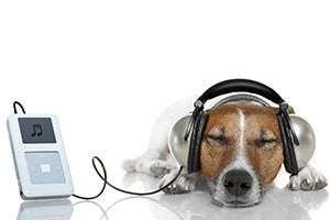 Audio Visual Technology