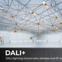 DALI+ DALIplus